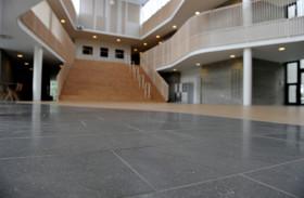 Scuola Internazionale di Ikast: Danimarca